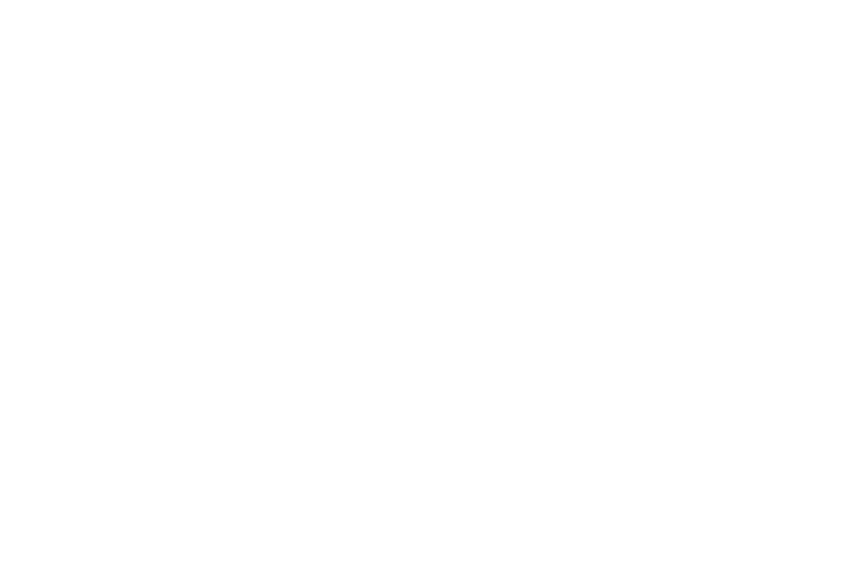 Annapolis Arts Alliance